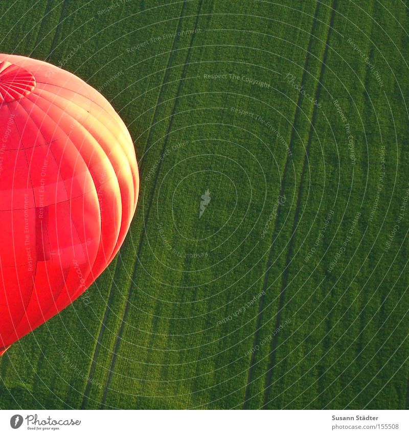Green Meadow Freedom Warmth Air Bird Field Aviation Driving Tracks Dresden Hot Air Balloon Red Basket Saxony Tractor