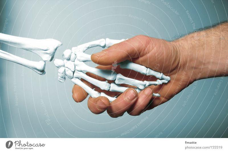hands Hand Skeleton Transience Death Salutation Handshake father