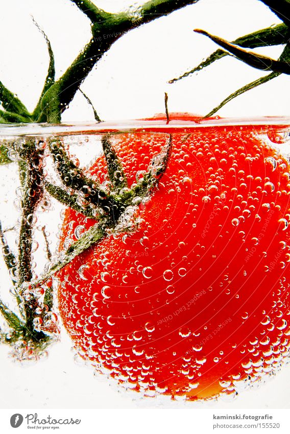 Water Red Fresh Vegetable Vitamin Tomato Crunchy Water blister Trickle