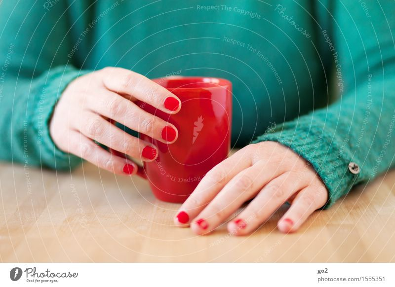 Human being Woman Green Hand Relaxation Red Calm Adults Life Feminine Healthy Wood Table Fingers Break Beverage