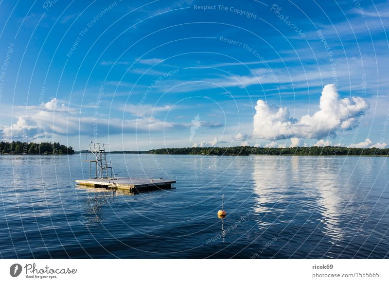 Bathing area on the Swedish coast Relaxation Vacation & Travel Tourism Island Nature Landscape Clouds Tree Coast Baltic Sea Watercraft Blue Green Skerry Swede
