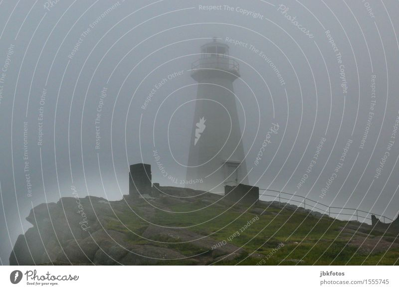 lighthouse Environment Nature Landscape Sky Clouds Weather Bad weather Gale Fog Grass Hill Mountain Moody Lighthouse Beacon Signal Wall of fog Gray Fjord