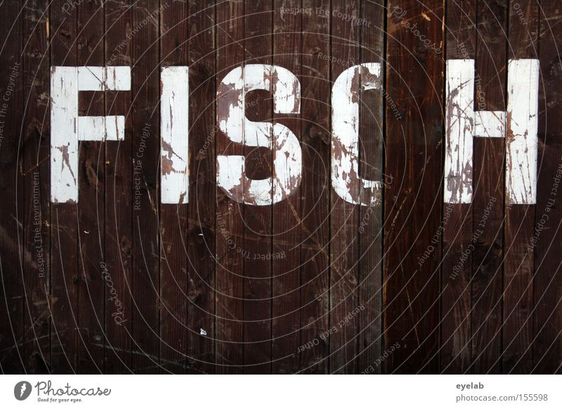 FISCH on Monday Wood Wall (building) Scratch mark Smear Wooden wall Hut Building Letters (alphabet) Typography Word Detail Characters Fish syllable