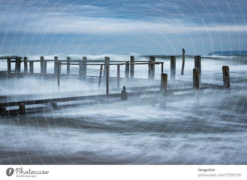 Storm Chasing Landscape Water Clouds Bad weather Wind Gale Waves Coast Bay Baltic Sea Ocean Aggression Blue Germany Rügen white Dock Jetty Bird Footbridge