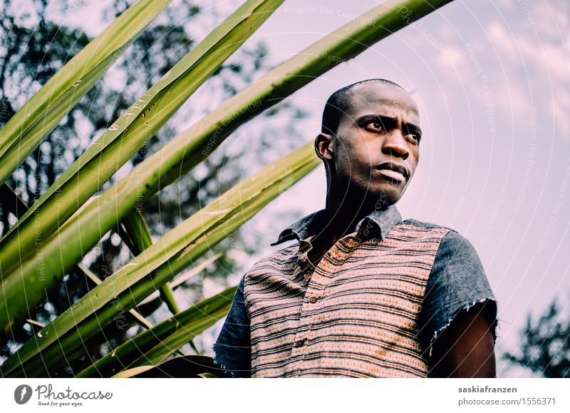 What do you see? Human being Masculine Young man Youth (Young adults) 1 Nature Fashion Clothing Exotic Identity Uniqueness Modern Dream Transience Change Time