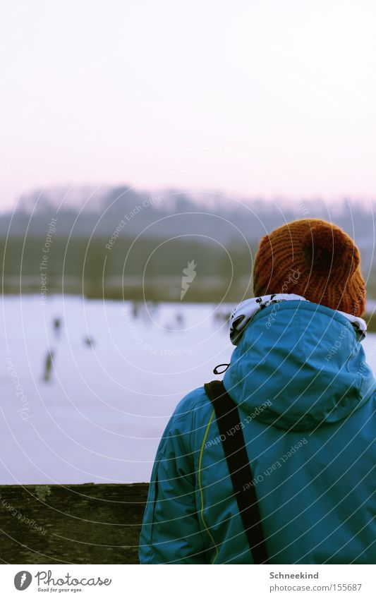 Cold times Ice Winter Cap Ice-skating Frozen Lake Envy To go for a walk Vantage point Human being Back Snow Playing Transience look of the shoulder