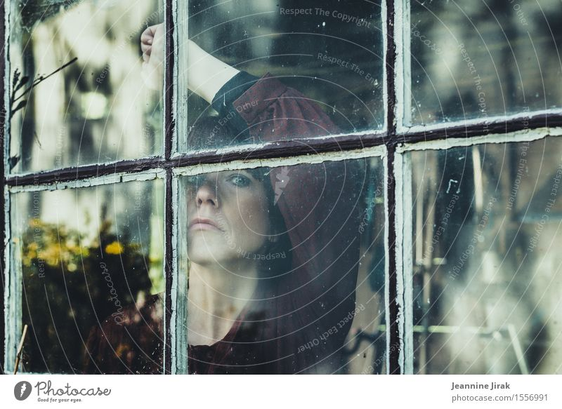 Beautiful views Garden Feminine Head Arm 1 Human being Bouquet View from a window Window Looking Stand Wait Esthetic Protection Humble Sadness Lovesickness