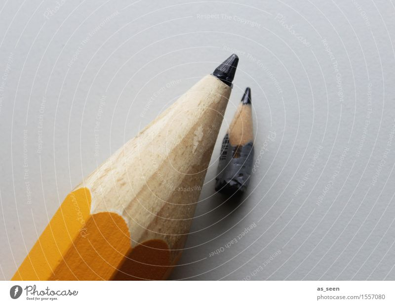 Colour Yellow Small Gray School Design Lie Creativity Large Study Point Culture Paper Illustration Attachment Education