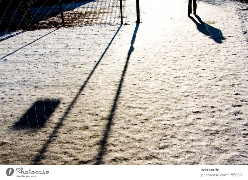 winter Snow To go for a walk Winter Cold Ice Shadow Sun Perspective Human being Legs Walking Running sports Winter maintenance program Snow layer Virgin snow