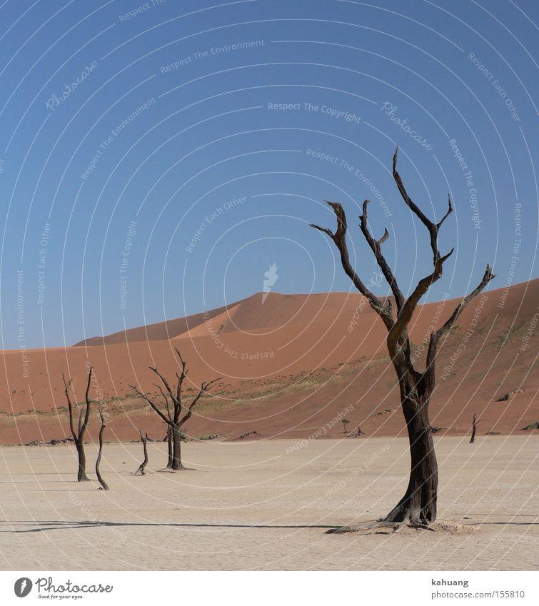 Dead Vlei Africa Desert Dune Namibia Namib desert Sossusvlei