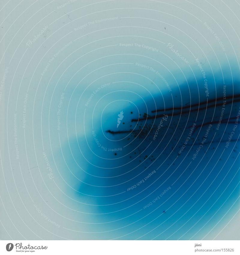 blue blood Blue Progress Water Art Experimental Lomography Holga Medium format Flow Blood Colour Patch Drops of water Chemistry modern art Daub