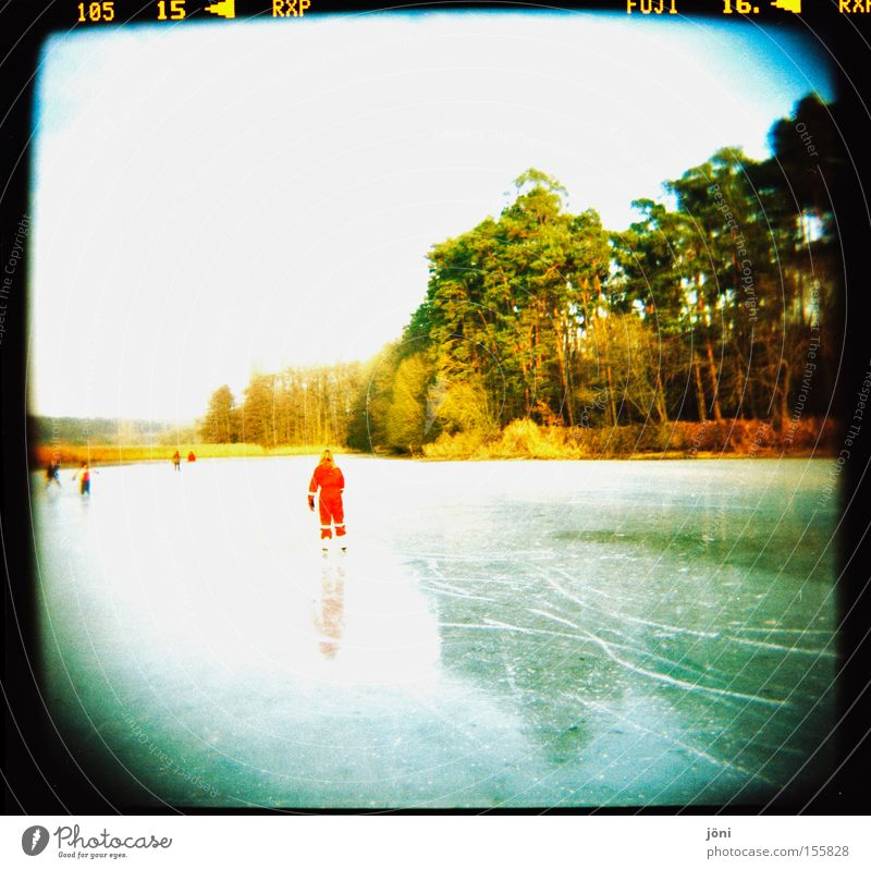 the red dot Ice-skates Winter Tree Forest Lake Pond Sun Light Reflection Tracks Joy Leisure and hobbies Smoothness Beautiful weather Playing Winter sports