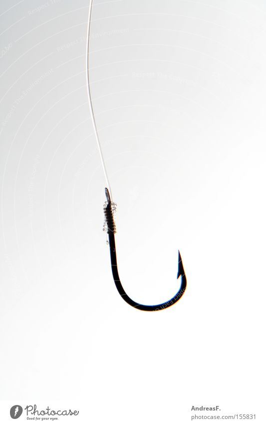 hook Checkmark Spoon bait Bait Lure Ambush Trap Catch Fishing (Angle) Fishery Point Barbed hook Fishing line Angler Leisure and hobbies Success Sharp thing