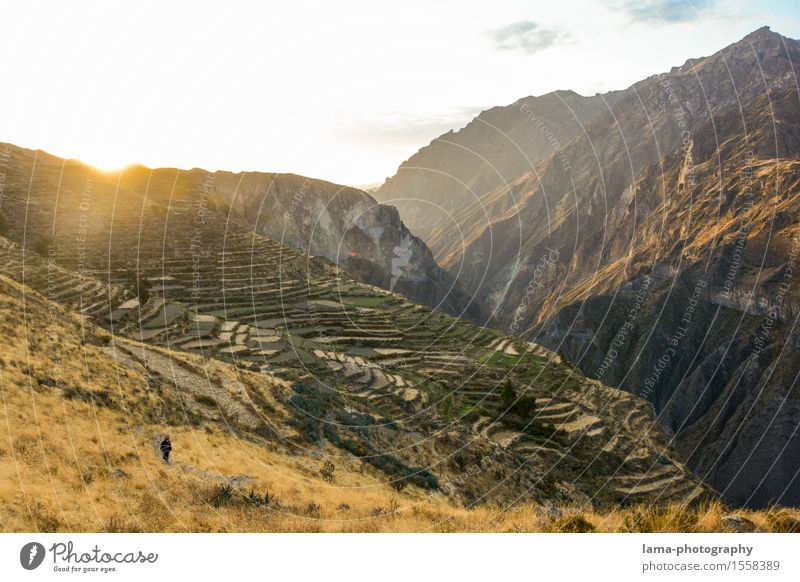 Colca Canyon Trip Adventure Expedition Camping Mountain Hiking Nature Landscape Sunrise Sunset Arequipa Peru South America Deserted Tourist Attraction