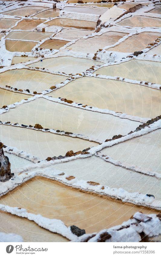 White Gold Salt Cooking salt Landscape maras Peru South America Saltworks salt terrace Multicoloured Inca Colour photo Exterior shot