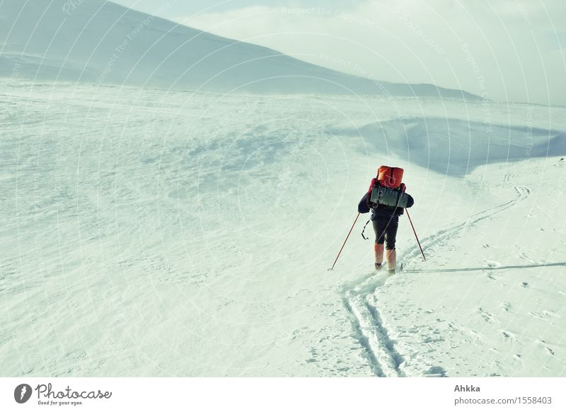 Ski hikers in a barren winter landscape, skiing in a ski track Adventure Winter Winter vacation Skiing 1 Human being Snow Mountain Backpack Backpacking vacation