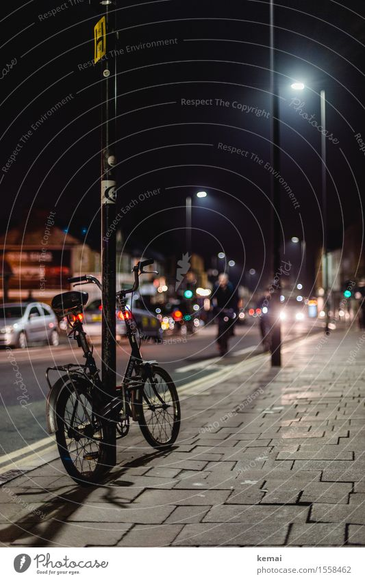 City Calm Dark Street City life Glittering Transport Car Bicycle Trip Authentic Cycling Street lighting Sidewalk Downtown Traffic infrastructure