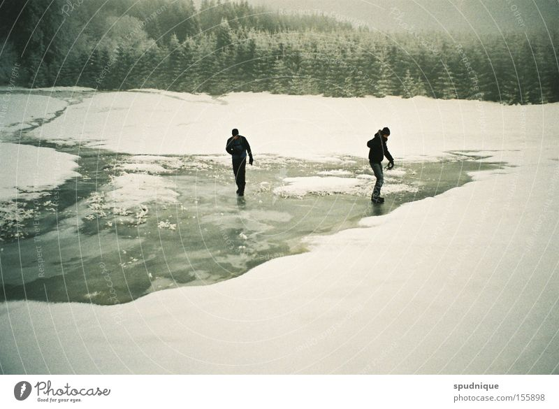 Water White Winter Calm Forest Snow Meadow Ice Hiking Frozen Freeze To break (something) Clearing Skid Glide Winter forest