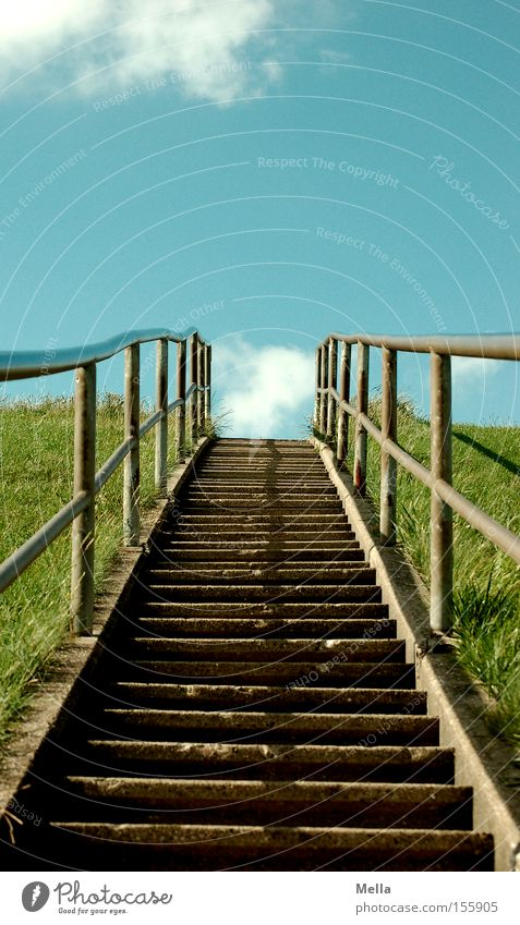 Up we go! Stairs Tall Upward Sky Clouds Blue Dike Grass Green Downward Handrail Banister Traffic infrastructure stairway to heaven Exterior shot