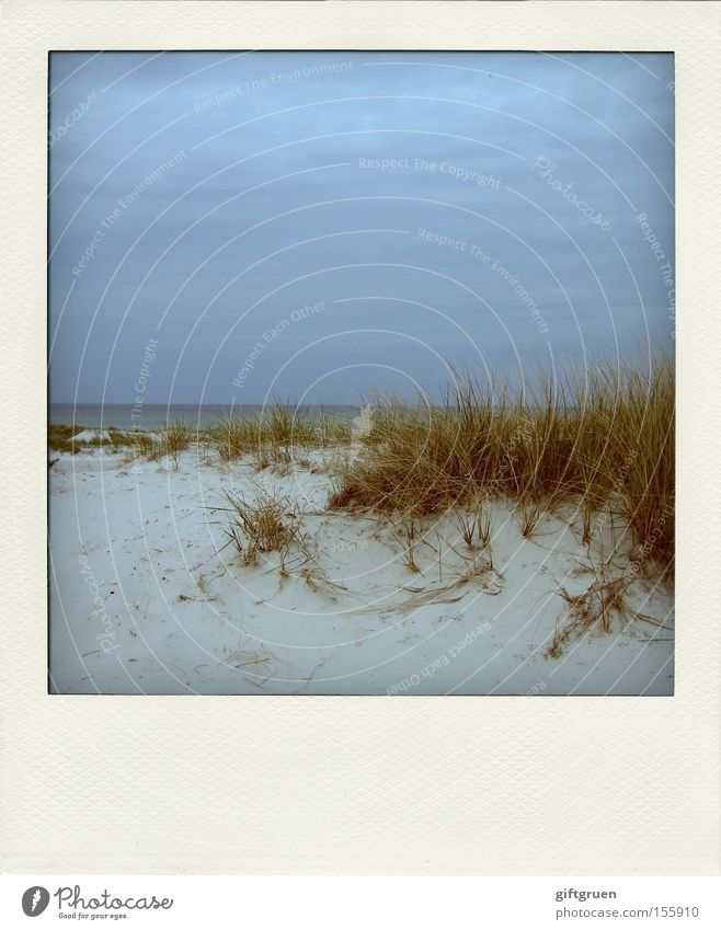 Sky Ocean Beach Vacation & Travel Calm Relaxation Sand Coast Horizon Earth Polaroid Beach dune Baltic Sea Darss Prerow