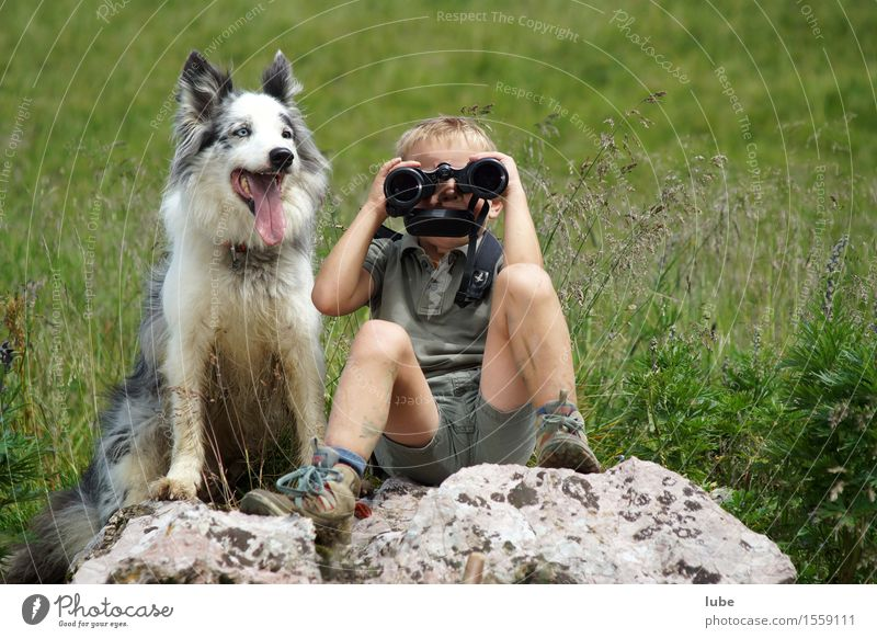 supervisory personnel 1 Human being 3 - 8 years Child Infancy Animal Pet Farm animal Dog Binoculars Looking Attentive Watchfulness Attachment Bird's-eye view