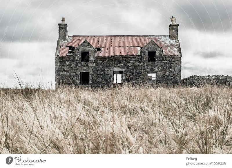 Old Landscape Clouds House (Residential Structure) Sadness Autumn Senior citizen Meadow Grass Gray Stone Facade Fear Wind Transience Past