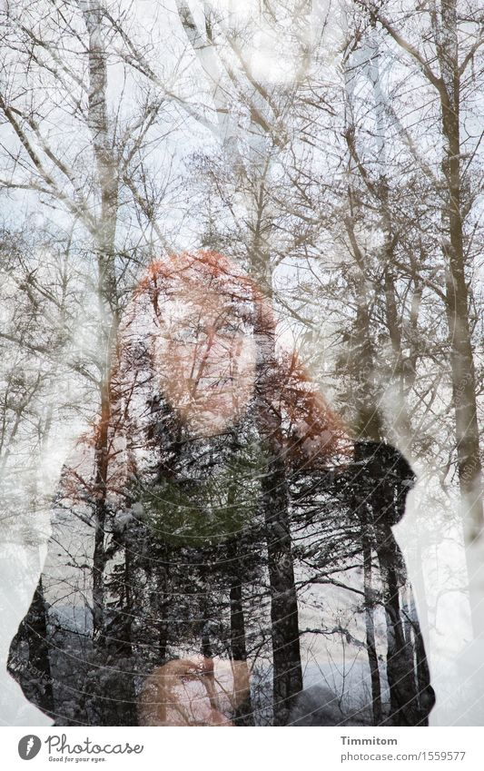 Human being Woman Nature Plant Winter Forest Adults Stand Hope Double exposure