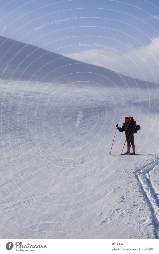 Young skier beside the track in untouched barren winter landscape on a hike Calm Adventure Snow Winter vacation Winter sports Skiing Human being 1 Landscape Ice