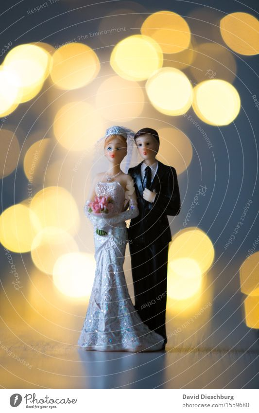 wedding anniversary Wedding Woman Adults Man Couple Partner Body Dress Suit Happy Contentment Trust Safety (feeling of) Together Love Infatuation Loyalty