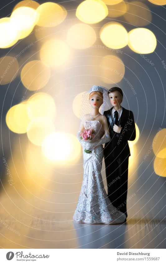 Woman Man Summer White Adults Love Emotions Spring Happy Couple Together Body Warm-heartedness Romance Safety Wedding