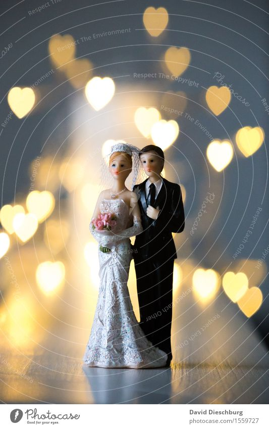 Woman Man Adults Love Emotions Religion and faith Happy Couple Together Body Stand Heart Romance Wedding Dress Trust