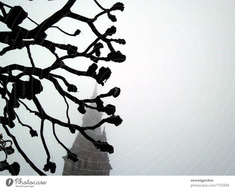 Tree Winter Cold Dark Building Religion and faith Art Background picture Fear Fog Creepy Hide Mystic Tilt Panic Eerie