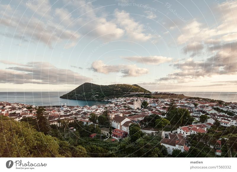 Angra do Heroísmo Nature Landscape Plant Air Water Sky Clouds Horizon Sunrise Sunset Summer Climate Beautiful weather Forest Hill Coast Ocean Island Town