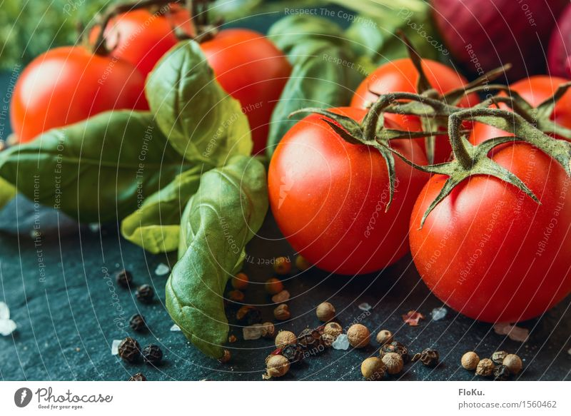 Tomato Basil Food Vegetable Herbs and spices Nutrition Organic produce Vegetarian diet Diet Italian Food Fresh Healthy Delicious Green Red To enjoy