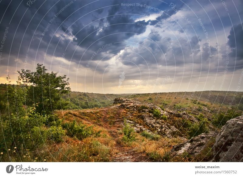 Rain and storm sky. Spring clouds and rain Beautiful Nature Landscape Sky Clouds Weather Storm Gale Tree Grass Bushes Meadow Hill Dark Green May field