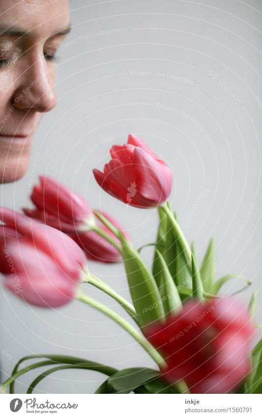 tulips Lifestyle Style Leisure and hobbies Woman Adults Face 1 Human being 30 - 45 years Spring Tulip Bouquet Fragrance To enjoy Smiling Fresh Bright Beautiful