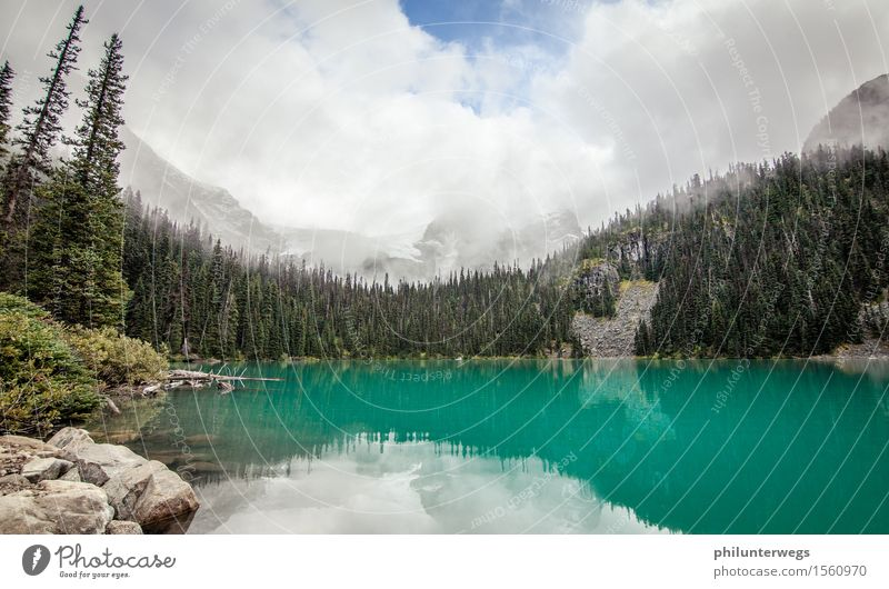 Glacial lake? earlier perhaps Hiking Environment Nature Landscape Climate Climate change Beautiful weather Snowfall Tree Hill Rock Alps Mountain Peak