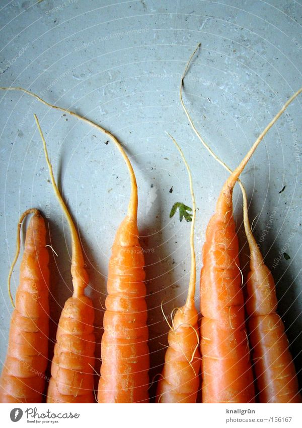 Nutrition Orange Healthy Cooking & Baking Vegetable Carrot Root Root vegetable Crunchy Vegetarian diet Raw vegetables