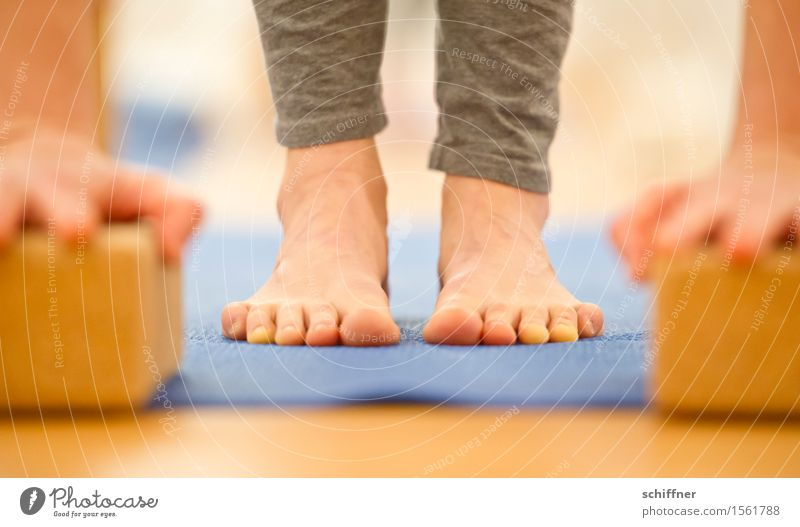 Soon I'll have the floor... Healthy Life Harmonious Well-being Calm Meditation Leisure and hobbies Sports Yoga Human being Arm Hand Legs Feet Toes Thin
