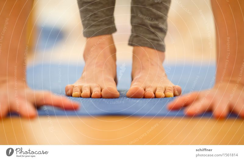 Human being Hand Relaxation Calm Life Sports Healthy Feet Leisure and hobbies Arm Fingers Fitness Thin Well-being Meditation Sports Training