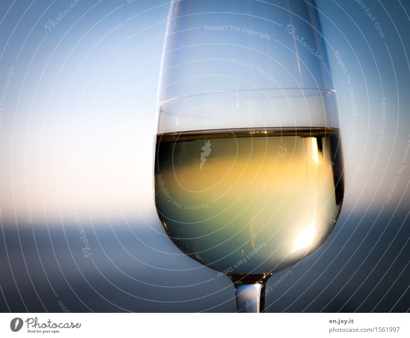 truth Beverage Alcoholic drinks Wine Sparkling wine Prosecco Glass Wine glass Lifestyle Luxury Healthy Healthy Eating Harmonious Relaxation Vacation & Travel