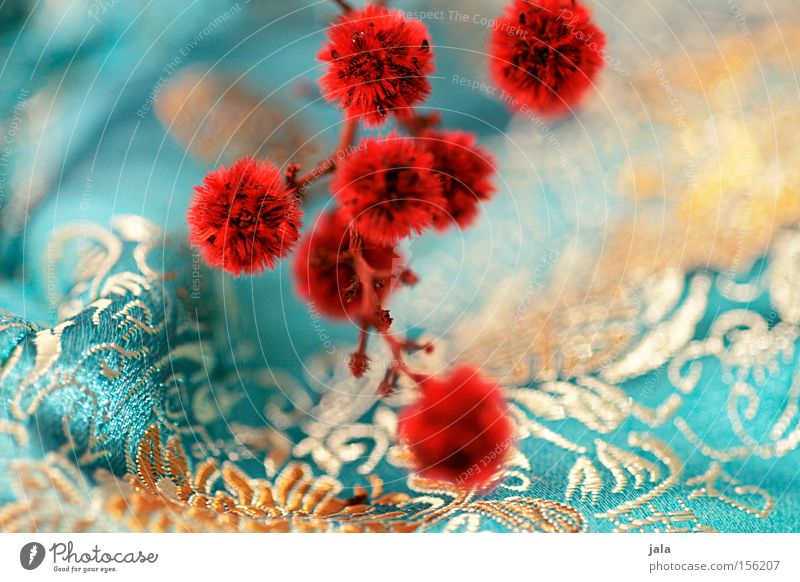 Flower Plant Red Yellow Playing Asia Decoration Cloth Turquoise Twig Tuft Dried flower