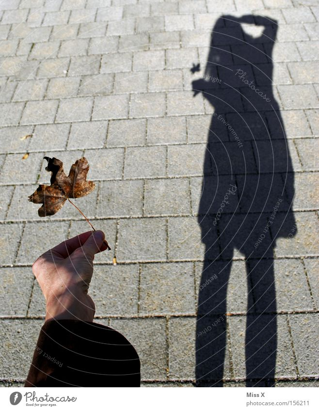Woman Leaf Adults Black Autumn Gray Legs Sidewalk Shadow Photographer Take a photo Self portrait Profession Autumnal In transit Maple leaf