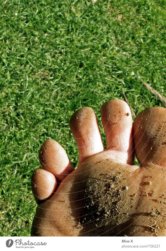 dirty foot Colour photo Exterior shot Pedicure Summer Feet Warmth Grass Meadow Stone Dirty Mud Barefoot Toes Stony nature trail foot massage