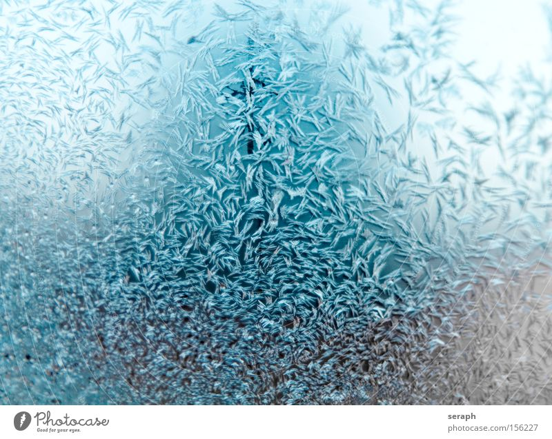 Ice Crystal Water Flower Blue Winter Cold Snow Glittering Background picture Fresh Frost Wallpaper Frozen Freeze Macro (Extreme close-up) Crystal structure