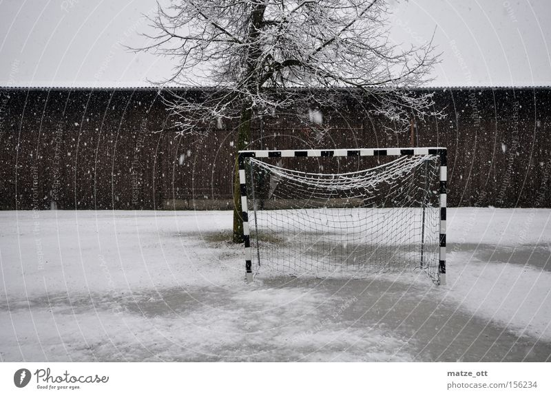 ... and another winter fairy tale PART 3 Hand ball Handball Soccer Winter break Goal World Cup Snow Snowfall Weather Croatia Lawn Grass surface Cold Tree Barn