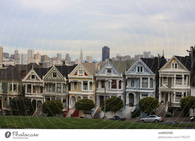 skyline san francisco San Francisco California Alamo Square Building USA San Francisco bay Skyline Landmark Monument Painted Ladies Victorian Villas