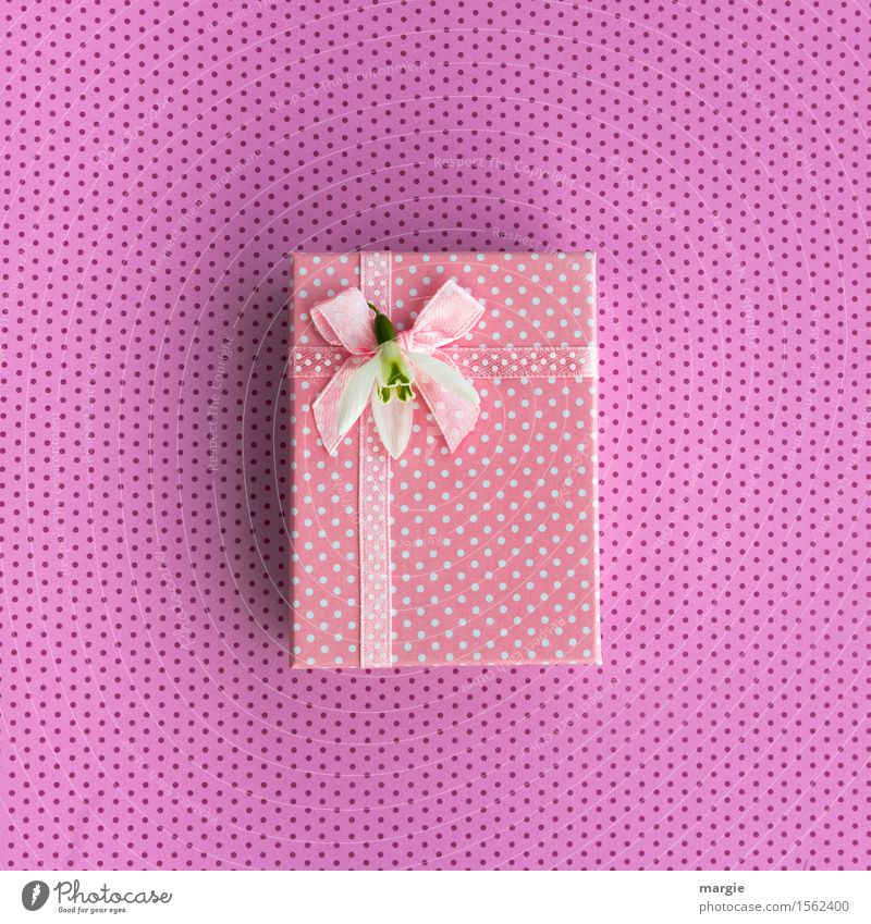 Pink gift, parcel, bow, ribbon, flower blossom, and dots Shopping Design Joy Handicraft Feasts & Celebrations Mother's Day Wedding Birthday Flower Exotic Sign