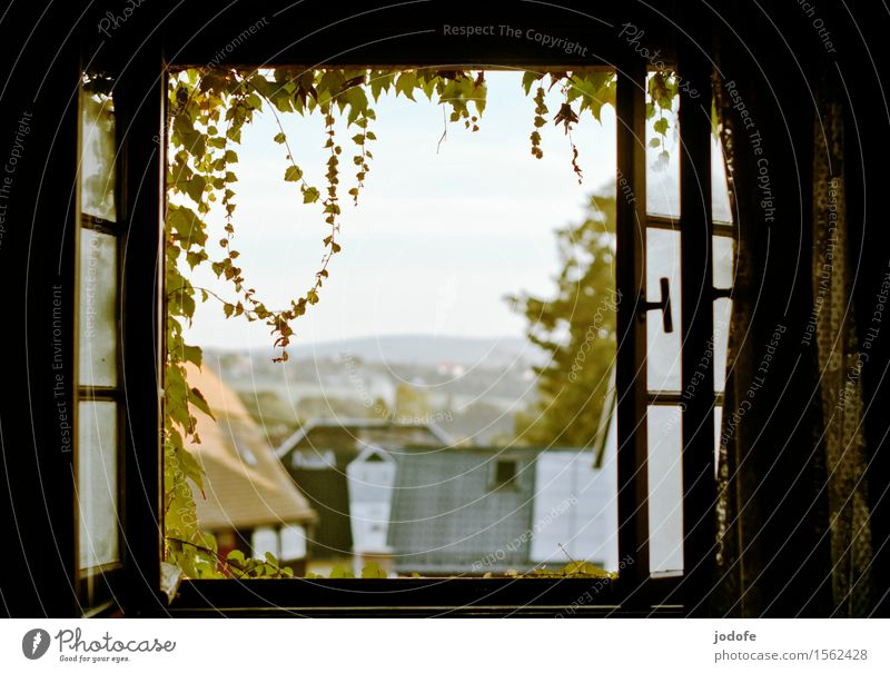 Vacation & Travel Plant Relaxation Landscape Loneliness Window Garden Bright Field Idyll Open Romance Roof Village Frame Rural