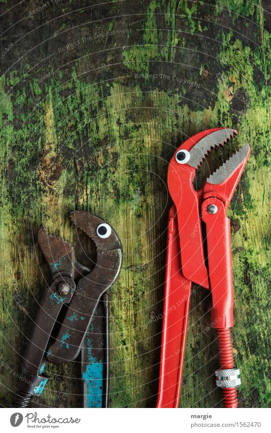Fuck you, man. Work and employment Profession Craftsperson Workplace Construction site Services Craft (trade) Tool Scissors Animal 2 To talk Green Red Mistrust